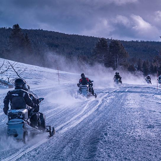 SYAG_SM_Winter_Bob_Grove_dsc_3680_32860154138_o
